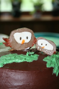 Baby shower cake, owls, fondent